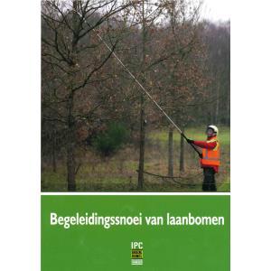 Begeleidingssnoei van laanbomen